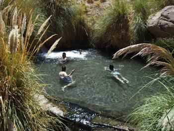 Taking the Kids to Chile - The spectacular Atacama pools are a welcome sight