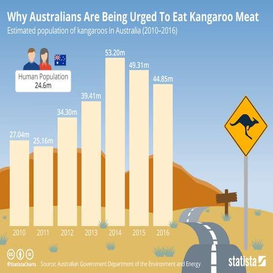 Australians Urged To Eat Kangaroo Meat