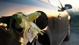 Controversy Over Ethanol