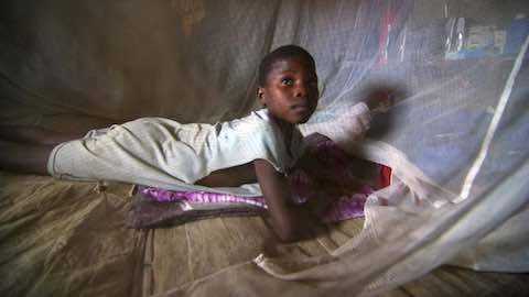 Bed Nets Fight Malaria in West Africa