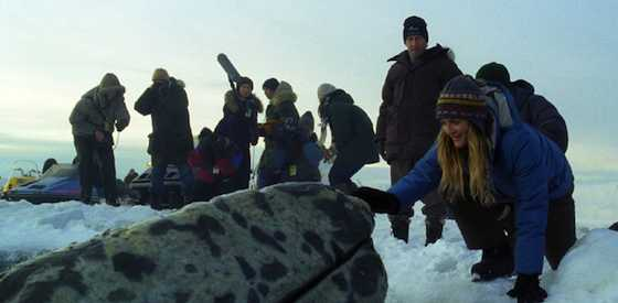 Drew Barrymore and John Krasinskiin Big Miracle