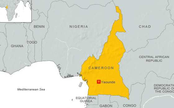 Cameroon Says No Terrorists Training on its Territory