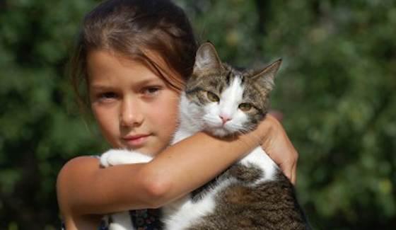 Best Cat Breeds for Kids