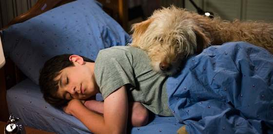 Zachary Gordon and Devon Bostick in Diary of a Wimpy Kid: Dog Days