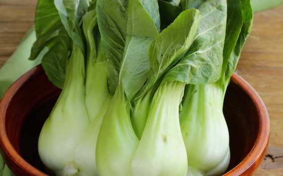 Enjoy Bok Choy Recipe