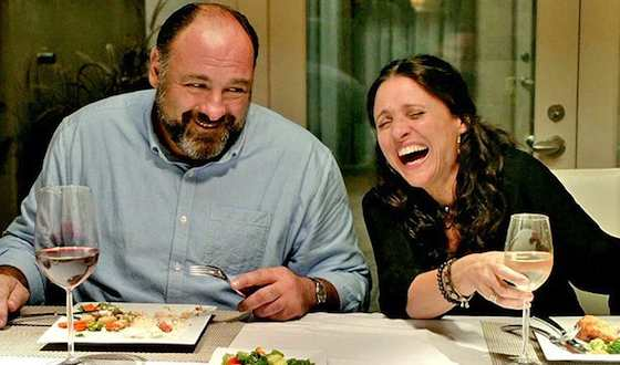 'Enough Said' Movie Review - Julia Louis-Dreyfus and James Gandolfini  | Movie Reviews Site