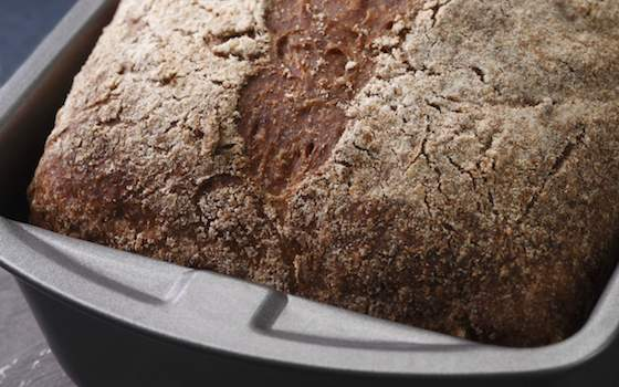 Everyday Whole-Wheat Bread Recipe