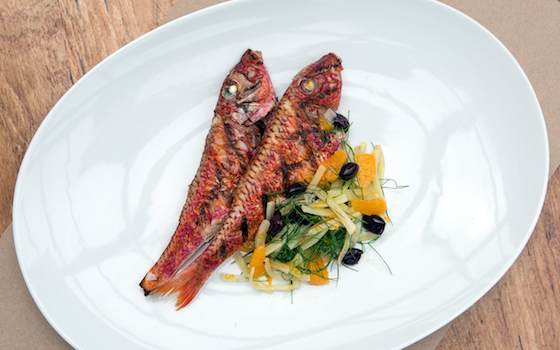 Grilled Red Mullet with Warm Fennel Salad and Oranges Recipe Recipe