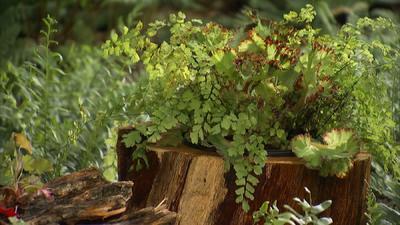 Log Planters that Salute America's Rustic Vernacular