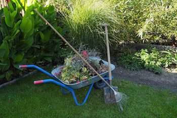 Fall is an ideal time to clean up your garden, improve your soil and take other steps to prepare for next spring's planting