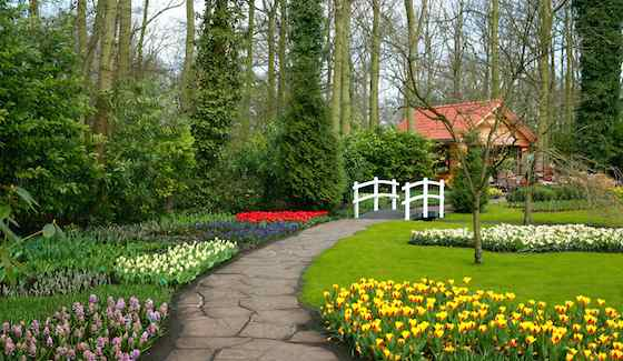 Blooming bulbs are best planted in large random groupings to create a naturalized effect