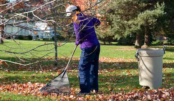 Raking leaves is but one of the fall tasks gardeners need to keep on top of