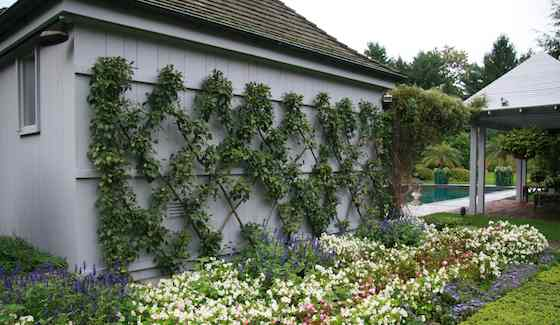 onspicuous elements can help structure a garden and transform the spaces within it