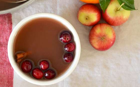 Mulled Cranberry Apple Cider Recipe
