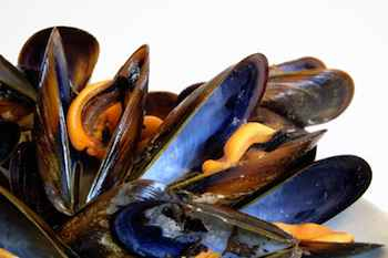 Mussels in Style: Mussels Mariniere - Wolfgang Puck Seafood Recipe