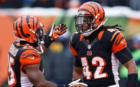 NFL 2014: Battle For Tightly-Contested AFC North Continues