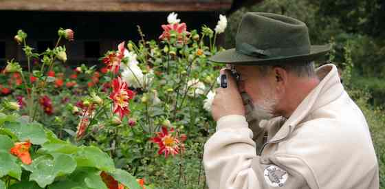 Photography Tips for Vacation Travelers