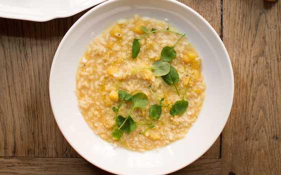 Risotto with Acorn Squash - Risotto Colla Zucca Recipe