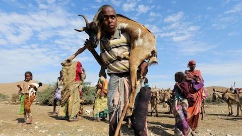 Somalia Faces Catastrophic Famine
