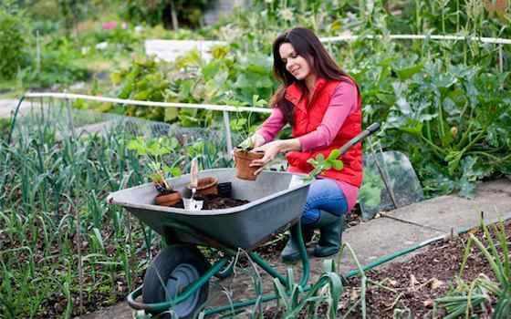 Spring Composting 101