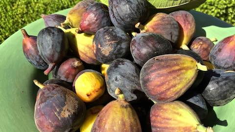Sweet Figs: Healthy Recipes that Don't Need Sugar Recipe