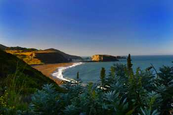 Taking the Kids To California Wine Country The Sonoma coast
