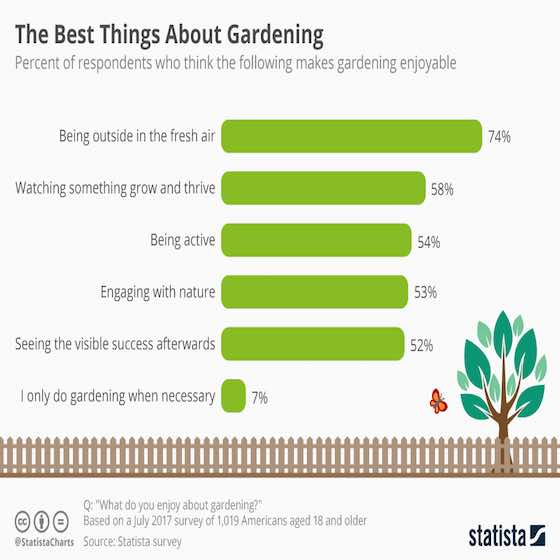 The Best Things About Gardening