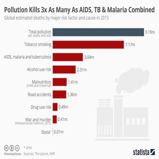 The Devastating Effect of Pollution