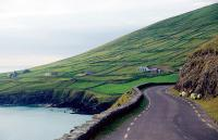 As you explore the lush Dingle Peninsula, you'll see why the Emerald Isle got its name.