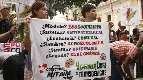 Venezuela to Consider Ban on Transgenic Seed