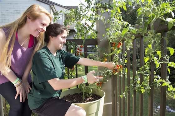 Why Millennials Love Gardening