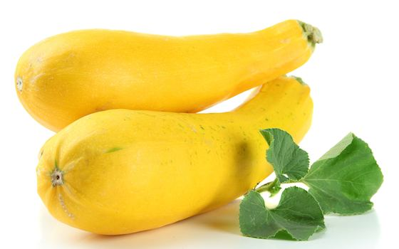 Yellow Crookneck Squash Salad Recipe