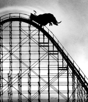 stock market roller coaster ride