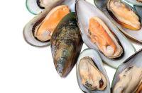 Clam & Mussel Soup Recipe Wolfgang Puck Shellfish Soup Recipe